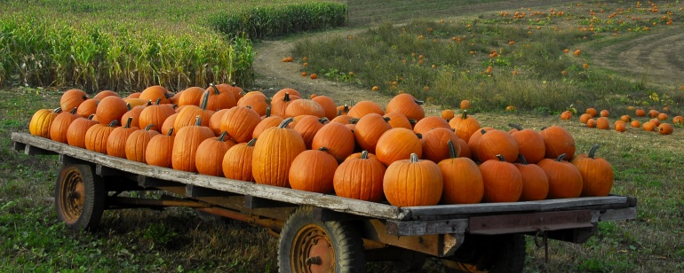 pumpkin-trailer-big